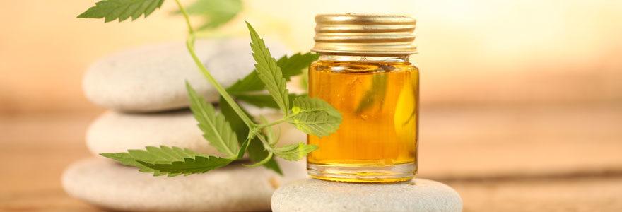 Massage à l'huile de chanvre